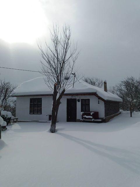 Трън зима